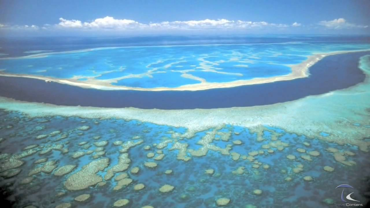 Büyük Bariyer Resifi Belgesel Filmi Özeti